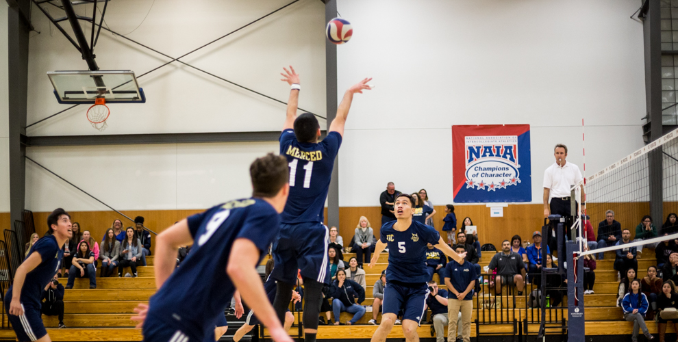 Photo for Men's Volleyball Can't Make It Three Straight