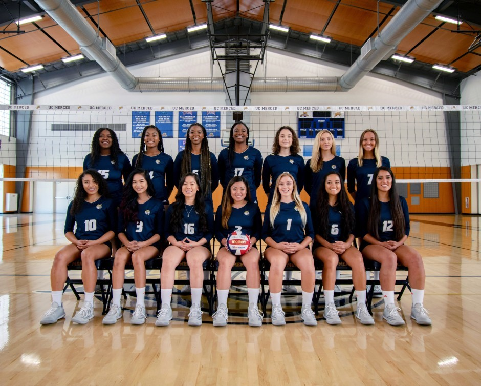 2017 Women's Volleyball Team Photo