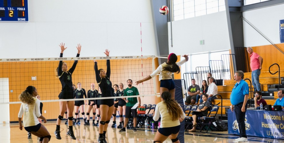 Photo for Women's Volleyball Wins In Five Sets Against PUC